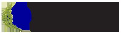 LAIFS Logo